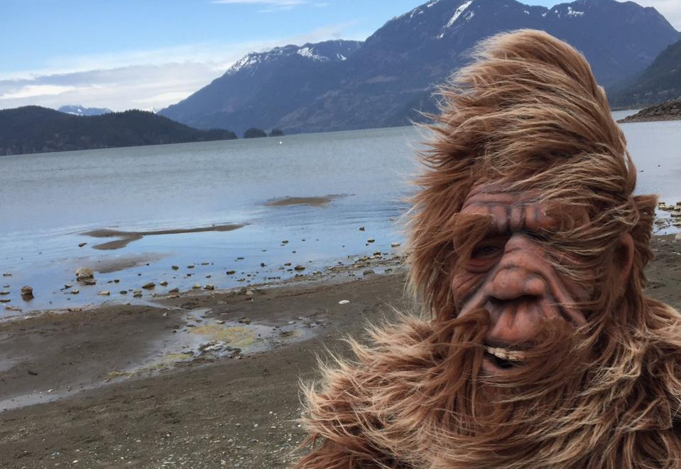 A man by a beach in a hairy suit and mask